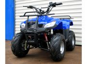 Electric Quad Bike (EU Plug) Blue/Black (EU Warehouse)